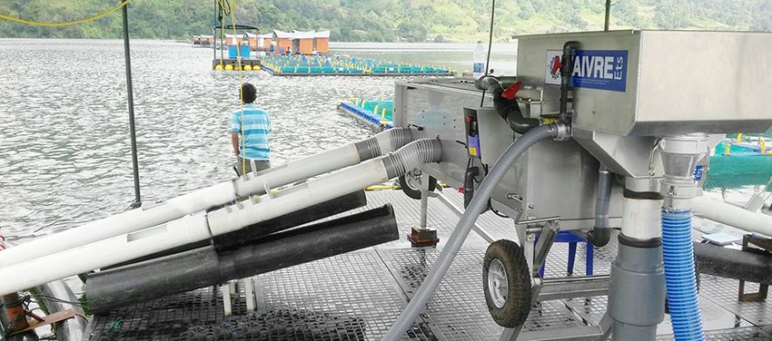 Slide-TH30-CAGE-INDO-1